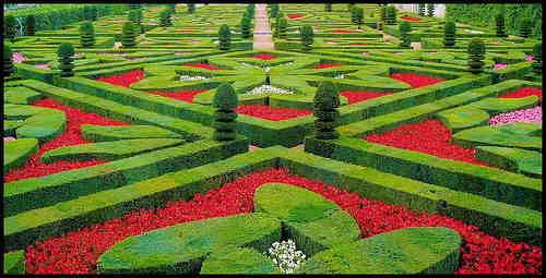 jardinesplendoroso